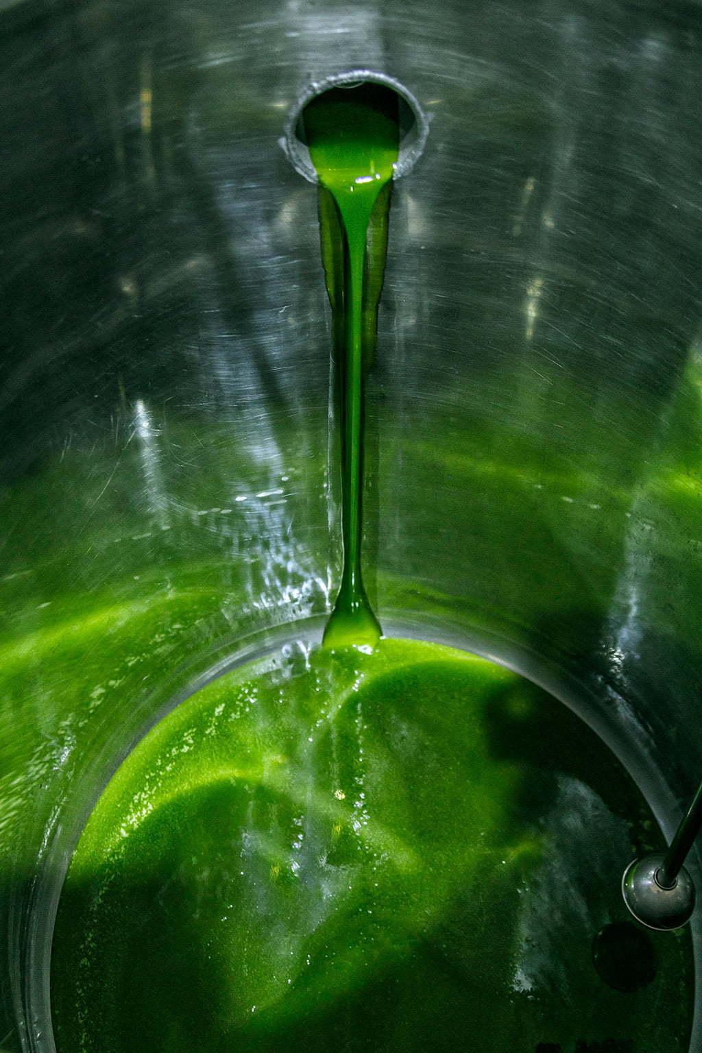 Fotografía corporativa para almazara de aceite de oliva